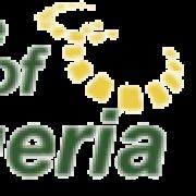 (c) Bestofnigeria.co.uk